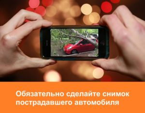 В первую очередь, сделайте как можно больше снимков пострадавшего автомобиля